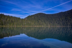 Reflection in the lake Royalty Free Stock Image