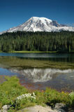 Reflection Lake At Mount Rainier, Washington State Royalty Free Stock Images