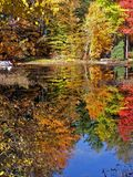 Reflection in lake Stock Image