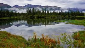 Reflection in lake stock photography