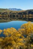 Reflection on lake Hayes Stock Images