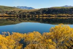 Reflection on lake Hayes Royalty Free Stock Photography