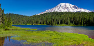 Reflection Lake, Mount Rainier Panorama Royalty Free Stock Image
