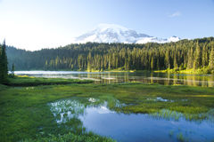 Reflection Lake and Mount Ranier volcano Stock Photography