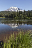 Reflection Lake, Mt. Rainier National Park, Washin Royalty Free Stock Images