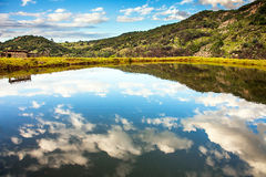 Reflection on a lake. Somewhere in South Africa Royalty Free Stock Photo