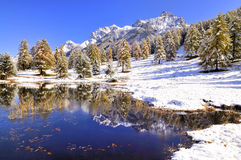 Reflection in a lake in Switzerland Stock Photography