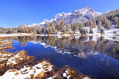 Reflection in a lake in Switzerland Stock Image