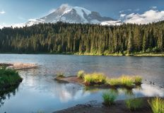 Reflection Lakes in Mount Rainier National Park royalty free stock image