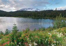 Reflection Lakes in Mount Rainier National Park stock images