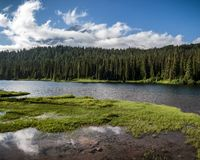Free Reflection Lakes On Sunny Summer Day In Mt Rainier National Park Royalty Free Stock Photos - 135763578