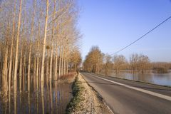 Leafless trees and Highway. A reflection of leafless trees in a river next to the Highway royalty free stock photo