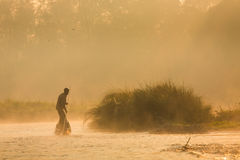 Reflection: man rowing on the boat in the foggy forest on the Narayani River in nepal, chitwan national park rain forest. Stock Photo