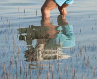 Reflection of man standing in a tropical lagoon Stock Photos