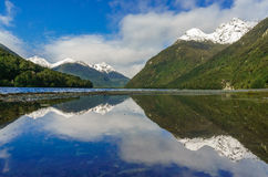 Reflection in the Milford Sound. New Zealand royalty free stock photography