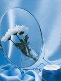 Reflection in a mirror bouquet Royalty Free Stock Image