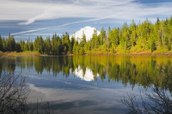 A  reflection in mirror lake. A beautiful reflection in mirror lake Royalty Free Stock Photography