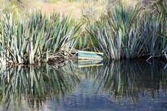 Reflection in  Mirror Lake. Fiordland National Park -  New Zealand Stock Image