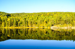 Reflection of morning autumn landscape in fjord Royalty Free Stock Photo
