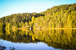Reflection of morning autumn landscape in fjord Royalty Free Stock Image