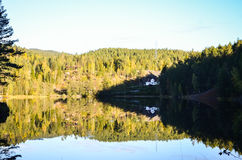Reflection of morning autumn landscape in fjord Stock Photography
