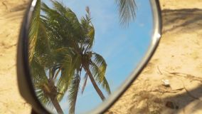 Reflection in motorcycle mirror green palm trees on blue sky background. Tropical palm trees on summer beach reflecting. In motorbike mirror stock footage