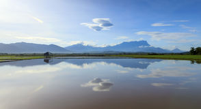 Reflection of Mount Kinabalu at Sabah, Borneo Royalty Free Stock Photos