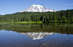Reflection of Mount Rainier Stock Image