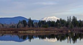Reflection of Mount Saint Helens royalty free stock photos