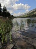 Reflection in Mountain Lake Royalty Free Stock Photo