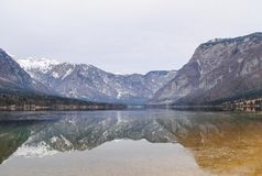 Reflection of mountain. S in winter, lake Bohinj Stock Images
