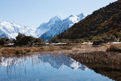 Reflection of mt Cook in shallow water of Red Tarns Royalty Free Stock Photography