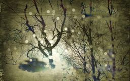 Reflection of naked trees and hazy sun in puddle. The reflection of the naked trees and hazy sun in the puddle, dead air. Inverted autumn image royalty free stock photos