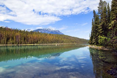 Reflection of the nature. Beautiful reflection of the sky, snowy mountain peaks and forests in the purest lake of the Canadian Rockies Stock Images