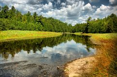 Reflection of Nature (HDR) Stock Images