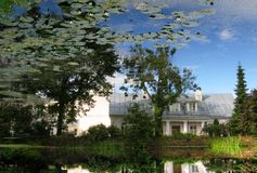 Reflection of nature in pond. Of botanic garden in tartu, estonia royalty free stock images