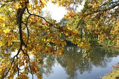 Reflection, Nature, Water, Autumn stock photos