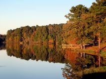 Reflection, Nature, Water, Leaf royalty free stock photography