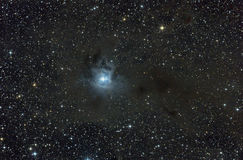 Reflection nebula in Cepheus constellation. Royalty Free Stock Photo