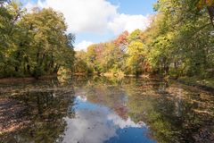 Free Reflection Of Colorful Trees In The Pond Royalty Free Stock Photography - 129522667
