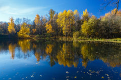 Reflection Of Fall Landscape Stock Image