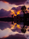 Reflection of a palm silhouette under a cloudy sky. At sunset in Sardinia Stock Image