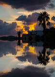 Reflection of a palm silhouette under a cloudy sky at sunset Royalty Free Stock Photos