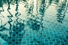 Reflection of palm trees in the pool water. Nature. Stock Image