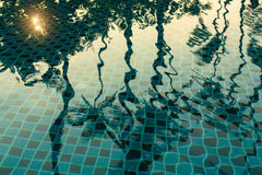 Reflection of palm trees in the pool water in Sunny weather. Nature. Royalty Free Stock Photos