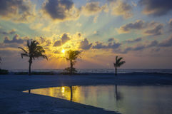 Reflection of Palm trees on the sea shore -  Sun ray through Clo Royalty Free Stock Photos