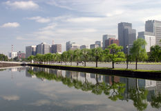 Reflection in a park.  Stock Image