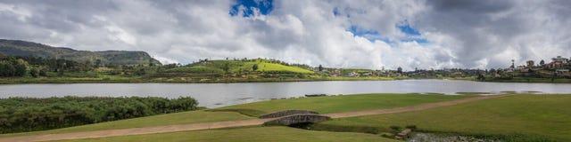 Reflection of pine tree in a lake. Sri Lanka Royalty Free Stock Photos