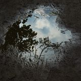 Dramatic sky in a puddle stock photo