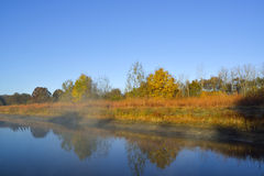 Reflection on pond,autumn. Stock Images